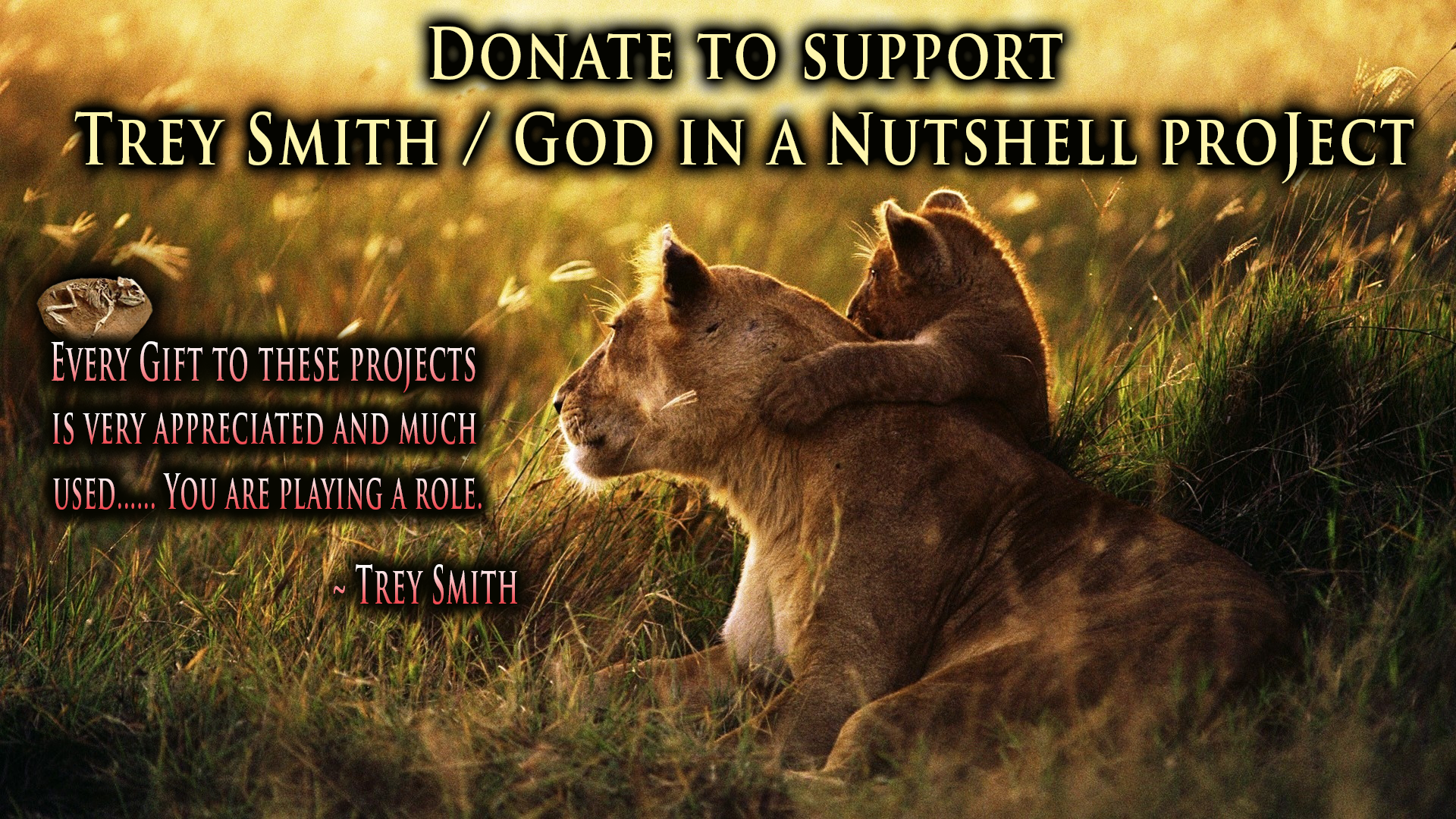 Support God in a Nutshell project