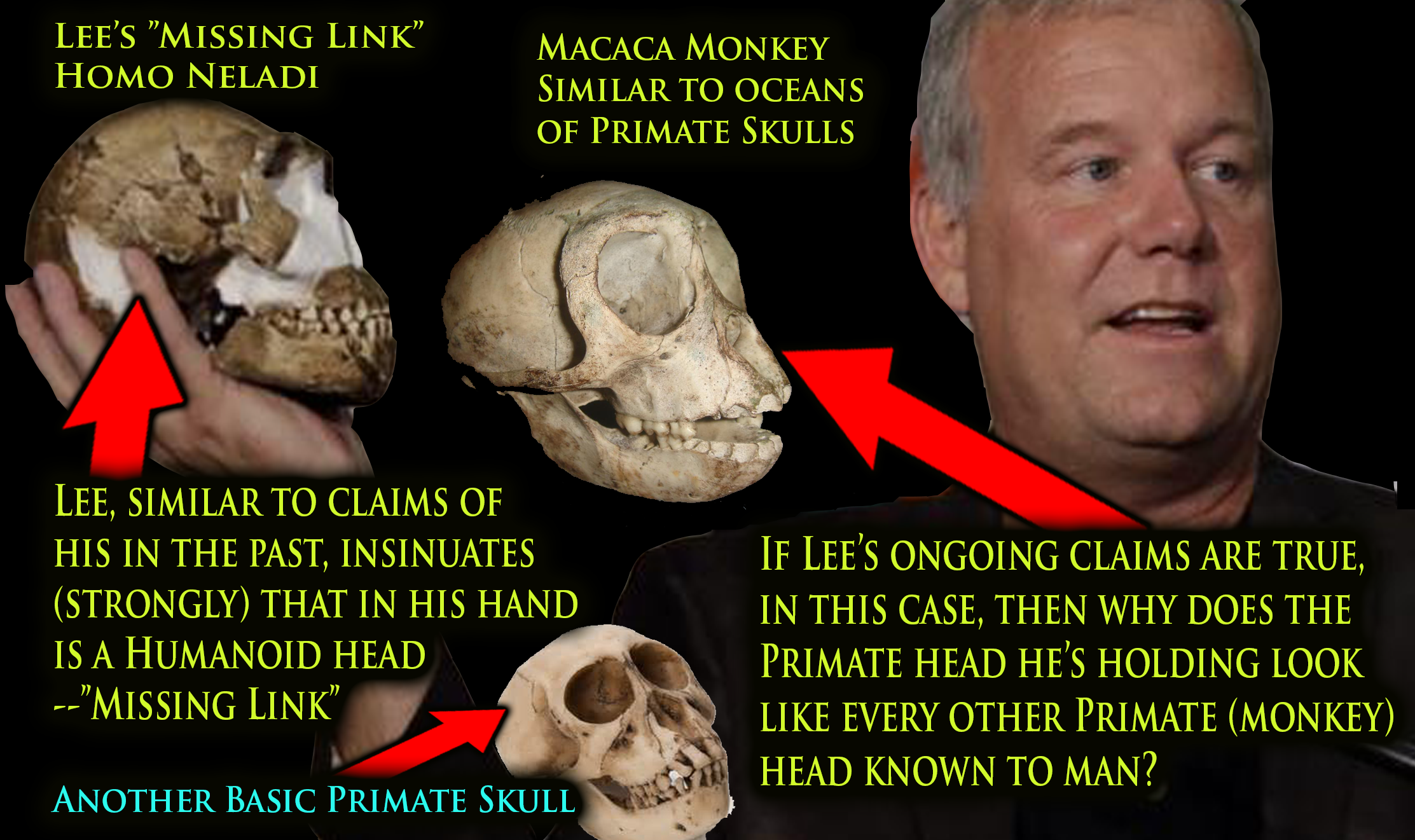 "Homo Neladi: Lee Berger's new claimed ""Missing Link"" compared to basic Primate"