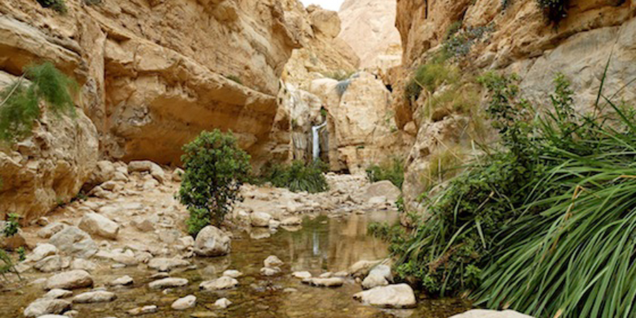 Ein-Gedi Discovery Proves Hebrew Scriptures Untainted for 2000 Years